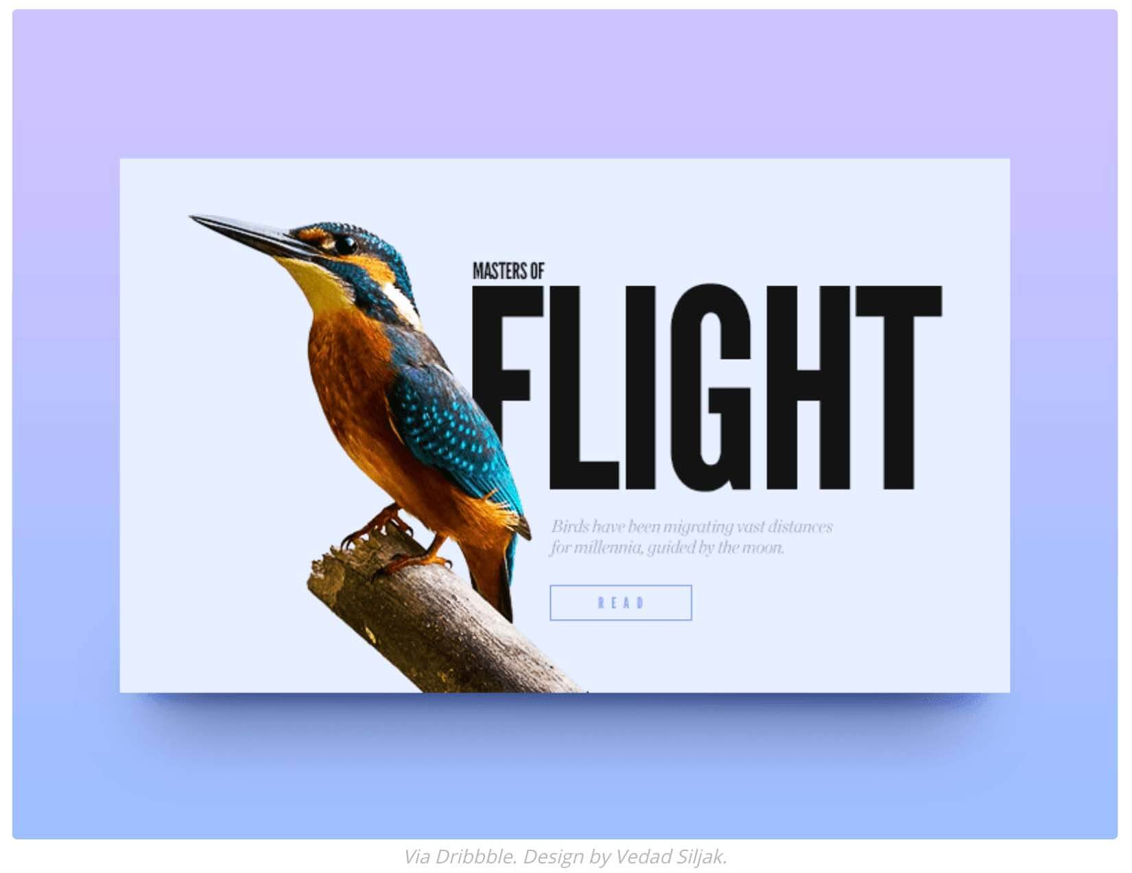 2020 Web Design Trends - Mixing Font with Photography and Graphics